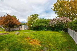 Photo 15: 2921 Gosworth Road in VICTORIA: Vi Oaklands Single Family Detached for sale (Victoria)  : MLS®# 391365
