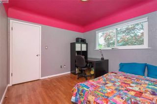 Photo 10: 2921 Gosworth Rd in VICTORIA: Vi Oaklands Single Family Detached for sale (Victoria)  : MLS®# 786626
