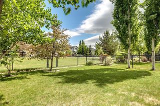 Photo 35: 78 Cranwell Manor SE in Calgary: Cranston Detached for sale : MLS®# C4229298