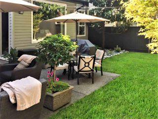 "Photo 20: 20807 97B Avenue in Langley: Walnut Grove House for sale in ""Wyndstar"" : MLS®# R2348733"
