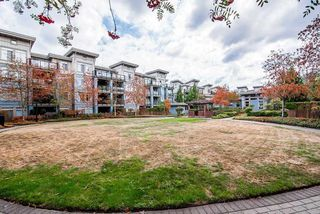 Photo 18: 230 15380 102A Avenue in Surrey: Guildford Condo for sale (North Surrey)  : MLS®# R2351582