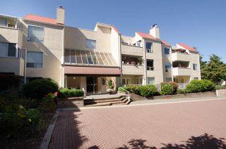 """Photo 17: 220 1441 GARDEN Place in Delta: Cliff Drive Condo for sale in """"MAGNOLIA"""" (Tsawwassen)  : MLS®# R2355938"""