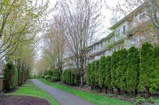 Photo 17: 22 14952 58 Avenue in Surrey: Sullivan Station Townhouse for sale : MLS®# R2367410