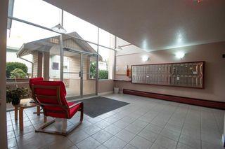 """Photo 16: 325 11806 88 Avenue in Delta: Annieville Condo for sale in """"Sungod Villa"""" (N. Delta)  : MLS®# R2368689"""