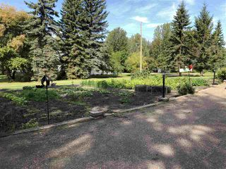 Photo 11: 5015 51 Street: Jarvie House for sale : MLS®# E4170693