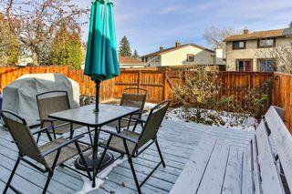 Photo 24: 2824 66 Street NE in Calgary: Pineridge Detached for sale : MLS®# C4274785