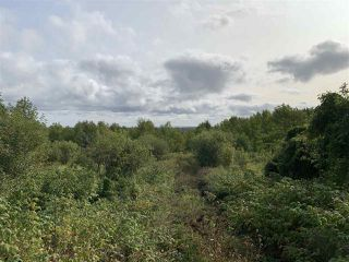 Photo 1: Lot Dan Fraser Road in Greenhill: 108-Rural Pictou County Vacant Land for sale (Northern Region)  : MLS®# 202020986