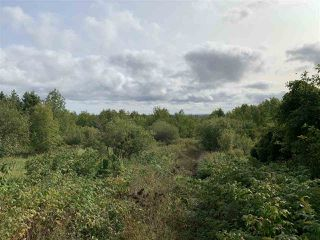 Photo 3: Lot Dan Fraser Road in Greenhill: 108-Rural Pictou County Vacant Land for sale (Northern Region)  : MLS®# 202020986