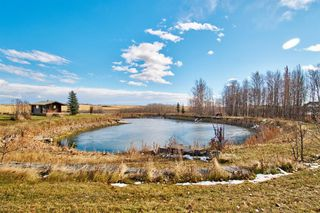 Photo 7: 3436 Township Road 294: Rural Mountain View County Detached for sale : MLS®# A1046453