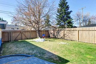 Photo 16: 25 HADDOCK Road SW in CALGARY: Haysboro Residential Detached Single Family for sale (Calgary)  : MLS®# C3614584
