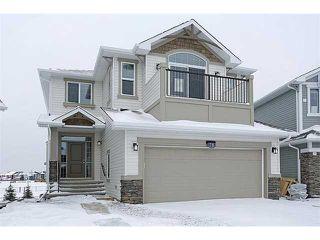 Photo 1: 78 AUBURN SPRINGS Park SE in Calgary: Auburn Bay Residential Detached Single Family for sale : MLS®# C3652537