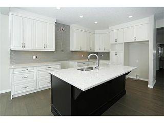 Photo 4: 78 AUBURN SPRINGS Park SE in Calgary: Auburn Bay Residential Detached Single Family for sale : MLS®# C3652537