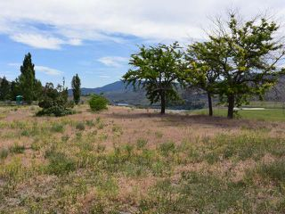 Photo 28: 1353 BALE ROAD in : Cherry Creek/Savona House for sale (Kamloops)  : MLS®# 131180