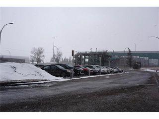 Photo 44: 1020 28 Street SE in Calgary: Albert Park/Radisson Heights House for sale : MLS®# C4101081