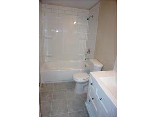 Photo 30: 1020 28 Street SE in Calgary: Albert Park/Radisson Heights House for sale : MLS®# C4101081
