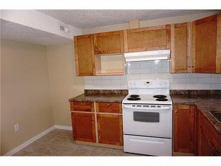 Photo 33: 1020 28 Street SE in Calgary: Albert Park/Radisson Heights House for sale : MLS®# C4101081