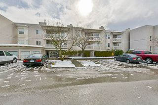 """Photo 1: 204 9942 151 Street in Surrey: Guildford Condo for sale in """"Winchester Place"""" (North Surrey)  : MLS®# R2144646"""