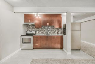 Photo 16: 17 MARTINDALE Boulevard NE in Calgary: Martindale House for sale : MLS®# C4121854