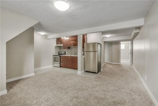 Photo 17: 17 MARTINDALE Boulevard NE in Calgary: Martindale House for sale : MLS®# C4121854