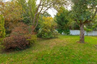 Photo 19: 710 Greenlea Dr in VICTORIA: SW Royal Oak House for sale (Saanich West)  : MLS®# 772675