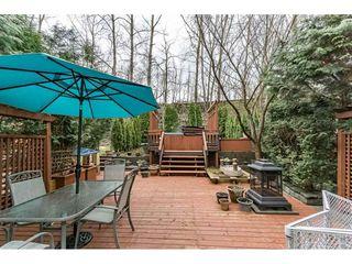 "Photo 2: 129 8888 216 Street in Langley: Walnut Grove House for sale in ""Hyland Creek Walnut Grove"" : MLS®# R2260987"