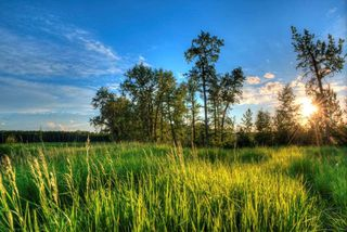 Photo 14: 249 Riverview Way: Rural Sturgeon County Rural Land/Vacant Lot for sale : MLS®# E4111011