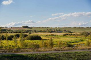 Photo 8: 249 Riverview Way: Rural Sturgeon County Rural Land/Vacant Lot for sale : MLS®# E4111011