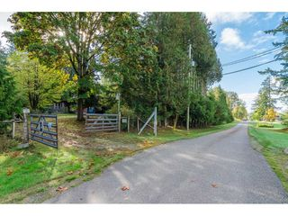 Photo 9: 2538 236 Street in Langley: Campbell Valley House for sale : MLS®# R2309962