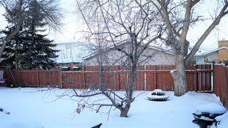 Photo 23: 18208 74 Avenue NW in Edmonton: Zone 20 House for sale : MLS®# E4140001