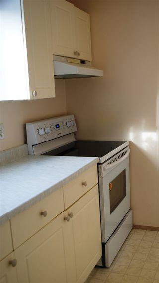 Photo 16: 318 17109 67 Avenue NW in Edmonton: Zone 20 Condo for sale : MLS®# E4142830