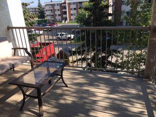Photo 26: 318 17109 67 Avenue NW in Edmonton: Zone 20 Condo for sale : MLS®# E4142830