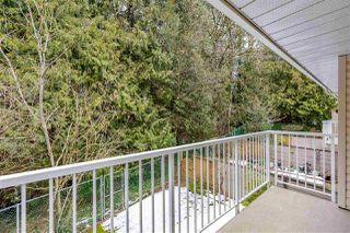 """Photo 15: 42 32339 7TH Avenue in Mission: Mission BC Townhouse for sale in """"Cedarbrooke Estates"""" : MLS®# R2347208"""