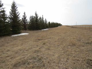 Photo 2: RR 124 TWP 442: Rural Flagstaff County Rural Land/Vacant Lot for sale : MLS®# E4149397