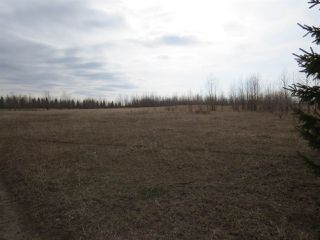 Photo 6: RR 124 TWP 442: Rural Flagstaff County Rural Land/Vacant Lot for sale : MLS®# E4149397