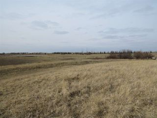 Photo 11: RR 124 TWP 442: Rural Flagstaff County Rural Land/Vacant Lot for sale : MLS®# E4149397