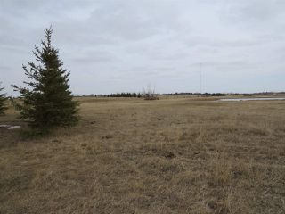 Photo 3: RR 124 TWP 442: Rural Flagstaff County Rural Land/Vacant Lot for sale : MLS®# E4149397