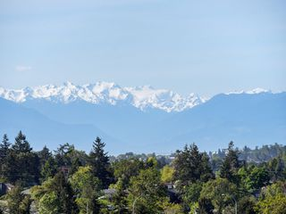 Photo 26: 848 Rainbow Crescent in VICTORIA: SE High Quadra Row/Townhouse for sale (Saanich East)  : MLS®# 410365