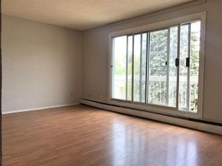 Photo 2: 309 3720 118 Avenue in Edmonton: Zone 23 Condo for sale : MLS®# E4156520