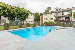 """Photo 20: 143 1909 SALTON Road in Abbotsford: Central Abbotsford Condo for sale in """"Forest Village"""" : MLS®# R2374363"""