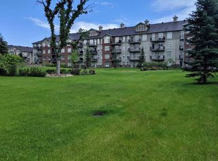 Photo 26: 310 6315 135 Avenue NW in Edmonton: Zone 02 Condo for sale : MLS®# E4162894