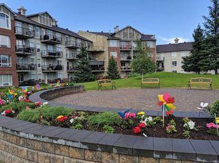 Photo 23: 310 6315 135 Avenue NW in Edmonton: Zone 02 Condo for sale : MLS®# E4162894