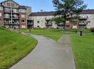 Photo 20: 310 6315 135 Avenue NW in Edmonton: Zone 02 Condo for sale : MLS®# E4162894