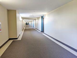 Photo 28: 310 6315 135 Avenue NW in Edmonton: Zone 02 Condo for sale : MLS®# E4162894
