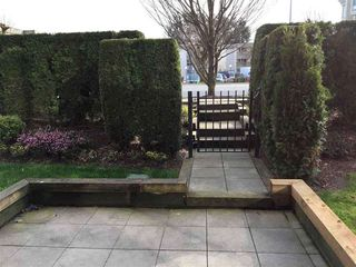 Photo 9: 118 2943 NELSON Place in Abbotsford: Central Abbotsford Condo for sale : MLS®# R2411258