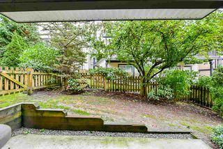 """Photo 17: 26 19932 70 Avenue in Langley: Willoughby Heights Townhouse for sale in """"Summerwood"""" : MLS®# R2414284"""