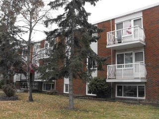Photo 2: 202 10644 113 Street in Edmonton: Zone 08 Condo for sale : MLS®# E4178973