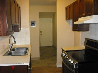 Photo 7: 202 10644 113 Street in Edmonton: Zone 08 Condo for sale : MLS®# E4178973