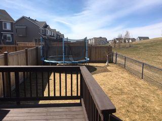 Photo 44: 2306 67A Street in Edmonton: Zone 53 House Half Duplex for sale : MLS®# E4194145