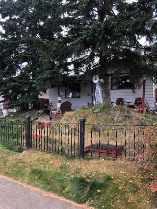 Photo 4:  in Calgary: Dover Detached for sale : MLS®# A1042059