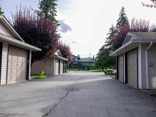Photo 19: 10 21541 MAYO Place in Maple Ridge: West Central Townhouse for sale : MLS®# R2508430